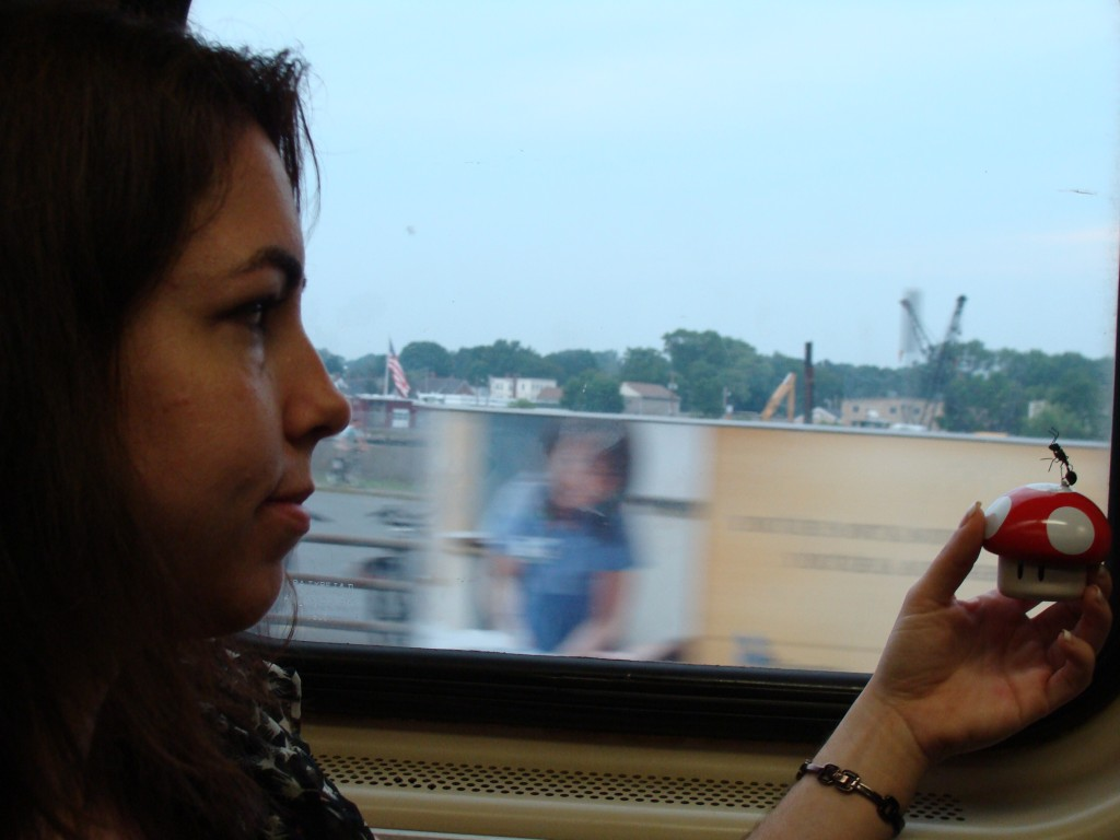 Riding the Commuter Rail